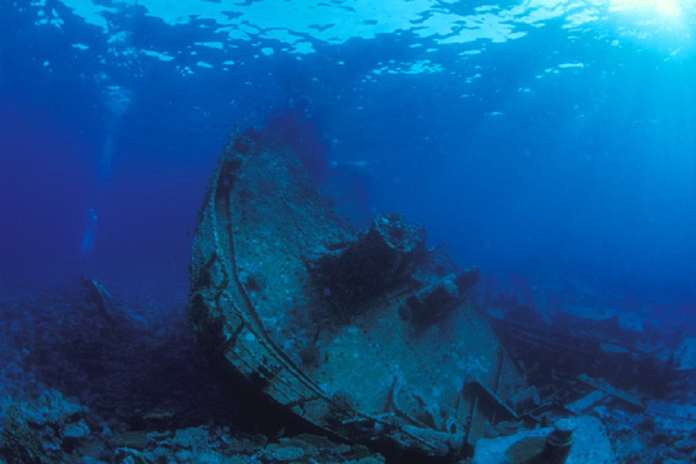 Wreck Blue Bow