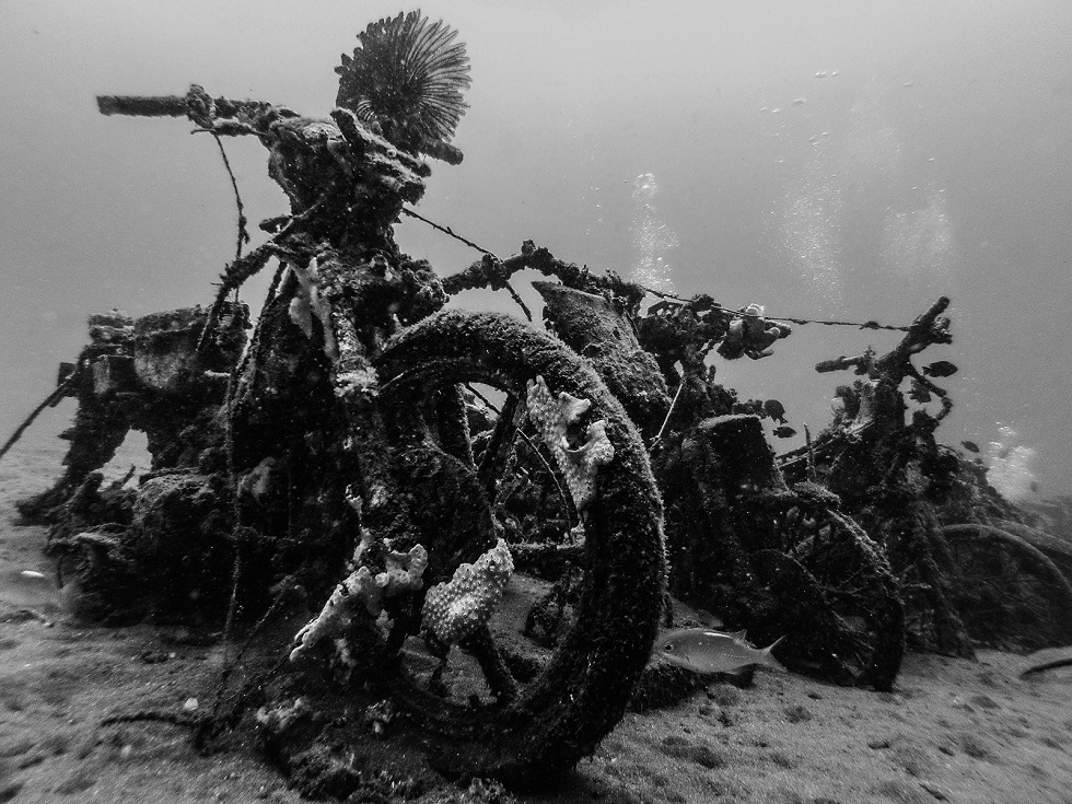 Wreck Motorcycle BW