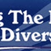 Living the Dream (LTD) Divers