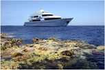 Travel the blue waters of the Red Sea on the Liveaboard MY Seven7Seas