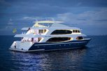 Travel the blue waters of the Maldives on the Liveaboard MY Duke of York