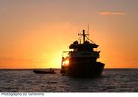 Dive holiday in the Socorro Islands with the Liveaboard Solmar V