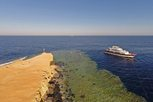 Travel the blue waters of the Red Sea on the Liveaboard MV Emperor Elite