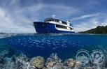 Travel the pristine waters of Eastern Indonesia on the Liveaboard Raja Ampat Aggressor