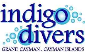 indigologo2010